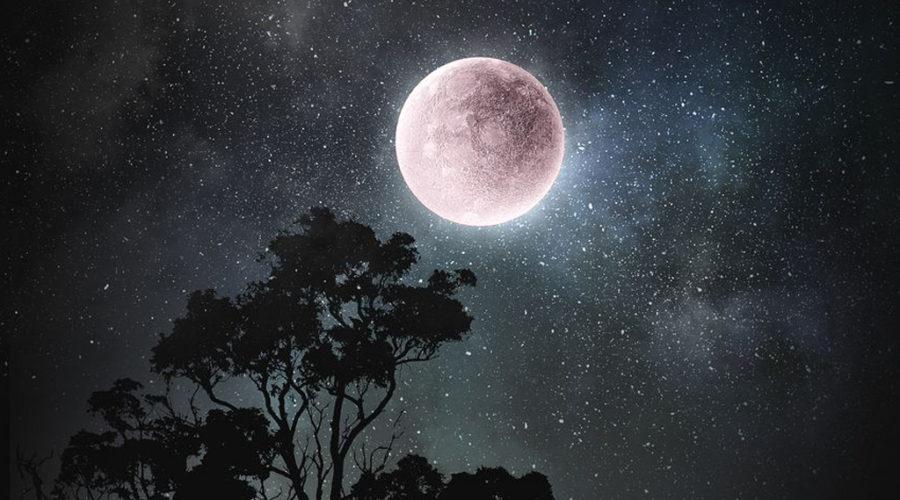 Superluna rosada